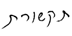 כתב היד של תומר ראבד