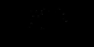 כתב היד של אור פירון זומר