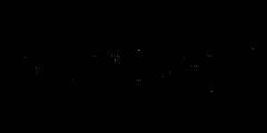 כתב היד של מאיה ורטהיימר