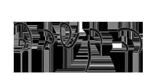 כתב היד של פיונה דרמון