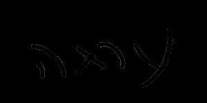 כתב היד של יסמין לוי