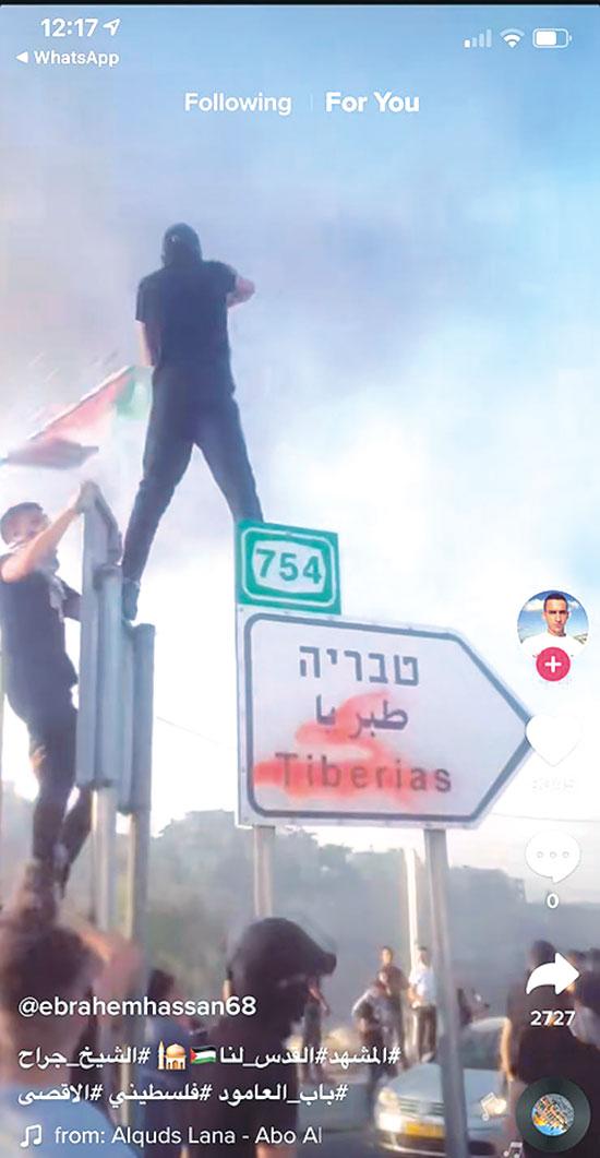 קריאה למרי של הפלסטינים / צילום: צילום מסך מתוך טיקטוק