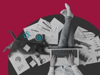מחקרים מגלים מה הסכנה הטמונה בעידוד יצירתיות בארגון / צילום: Shutterstock