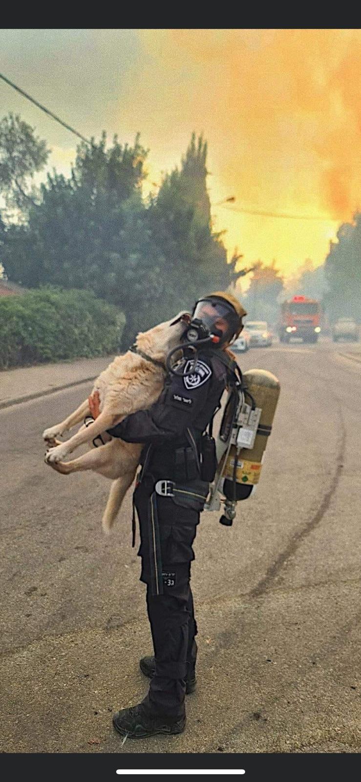 שוטרי ושוטרות היס''מ של מחוז ירושלים חילצו כלבים מבין הלהבות / צילום: דוברות המשטרה