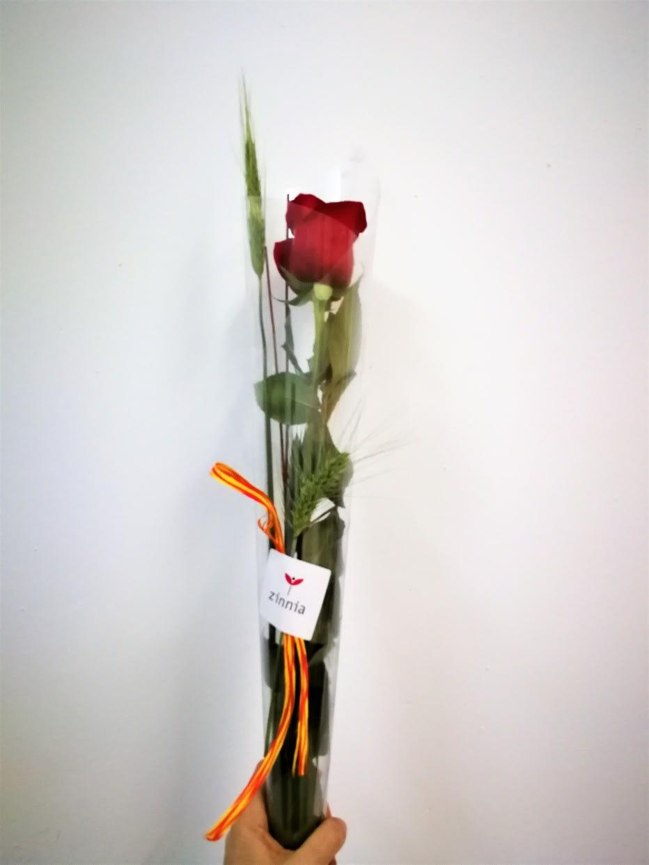 Cono Rosa Sant Jordi