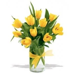 Tulipanes Amarillos (R-32)