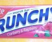 Crunchy Bar - Cranberry, Rasberry & Yogurt - 35 g