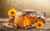 თაფლი აკაცია 0.450 კგ