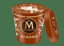Tarrina Magnum - Almond (440ml.)