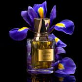 Powder- huile de parfum  premium