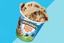 B&J's Peanut Butter 465ml