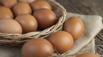 Яйця курячі фермерські (10шт)