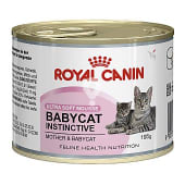 Mousse Babycat Instinctive