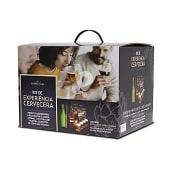 Kit experiencia cervecera caja 8 cervezas premium + de vasos + 2 guías