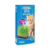 Hierba para gatos (elimina las bolas de pelo)