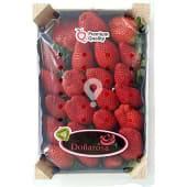 Freson de Huelva caja 1 kg