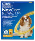 NEXGARD SPECTRA S - For Dogs from 3.6 to 7.5 kg; 1