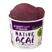 NATIVE Açaí Zero Açúcar adoçado com Stevia 160ml