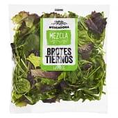 Ensalada brotes tiernos mix (lechuga batavia roja y verde, lollo rossa, espinaca, rucula)