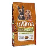 Alimento para perros medianos apetito voraz