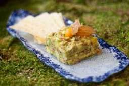 Tartar De Aguacate Y Mango
