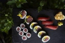 Tuna Bluefin Set I 15szt