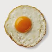 Fried Egg - 1