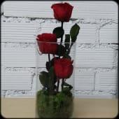 Jarrón con 3 rosas preservadas