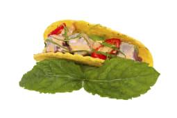 Taco Spicy Tuna