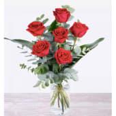Bouquet de 6 elegantes rosas rojas