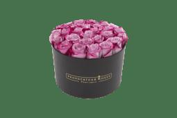 Caja redonda con 20-25 rosas deep purple frescas