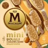 Magnum Mini Amandes et Gold
