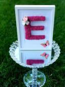 Tablou cu trandafiri criogenati si licheni  litera E