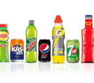 Refrescos (330 ml.)