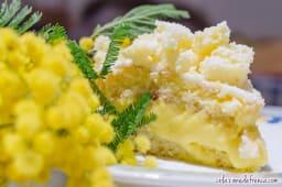 Mimosa  ananas