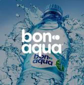 Bonaqua (0,5л)