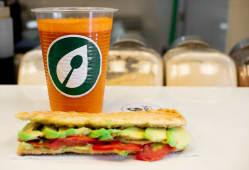 Extracto 16 oz. + sandwich de palta