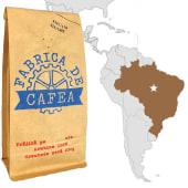 Brazilia Heritage