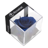 Rosa Preservada Azulina en Cubo