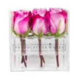 Rosas deep purple con caja acrílica (9 uds)