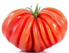 Tomate cœur de bœuf - 4 pièces : environ 1kg
