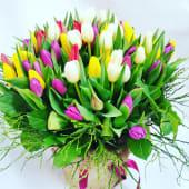 Bouquet 100 tulipani