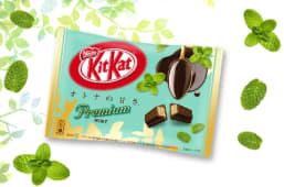 Paquet de 12 KitKat Menthe Premium