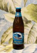 Big Wave- Golden ale