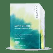 1 Caja de Teavanna Mint Citrus (12 filtrantes)