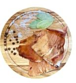 Кальмар перуанський (100г)
