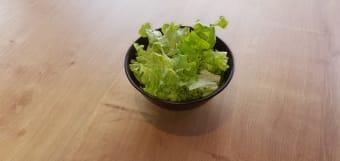 Lisnata zelena salata s domaćim dressingom