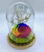 Rosa eterna con albero della vita