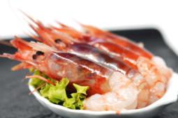 Sashimi gamberoni crudo - 6 pezzi