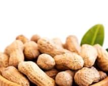Amendoim com Casca 300g